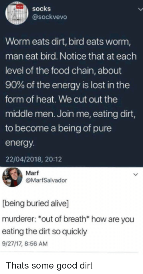 Murderer: SOcks  @sockvevo  Worm eats dirt, bird eats worm,  man eat bird. Notice that at each  level of the food chain, about  90% of the energy is lost in the  form of heat. We cut out the  middle men. Join me, eating dirt,  to become a being of pure  energy  22/04/2018, 20:12  Marf  @MarfSalvador  [being buried alive]  murderer: *out of breath* how are you  eating the dirt so quickly  9/27/17, 8:56 AM Thats some good dirt