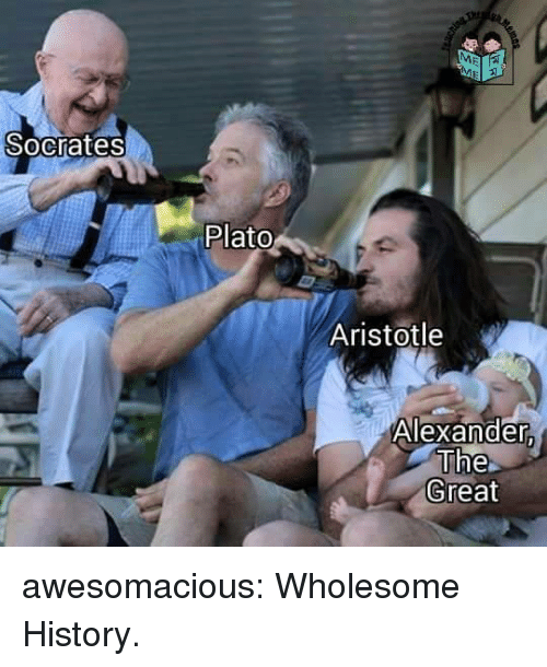 Aristotle: Socrates  Plato  Aristotle  Alexander  The  Great awesomacious:  Wholesome History.