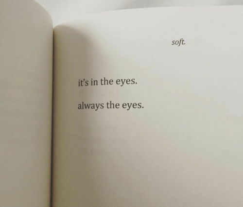 Always, Eyes, and Soft: soft.  it's in the eyes.  always the eyes.
