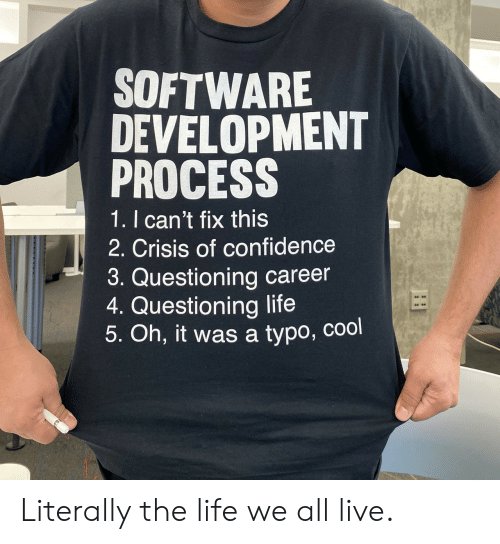 Confidence: SOFTWARE  DEVELOPMENT  PROCESS  1. I can't fix this  2. Crisis of confidence  3. Questioning career  4. Questioning life  5. Oh, it was a typo, cool Literally the life we all live.