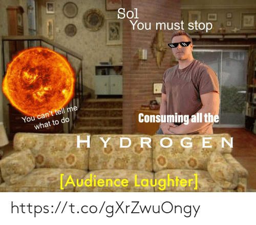 Laughter, All The, and Sol: Sol  You must stop  You can't tell me  what to do  Consuming all the  HYDR OGEN  TAudience Laughter https://t.co/gXrZwuOngy