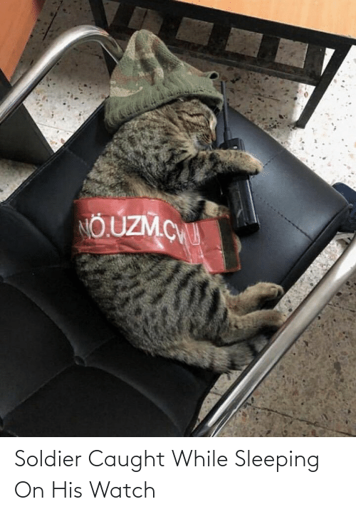 Aww Memes: Soldier Caught While Sleeping On His Watch