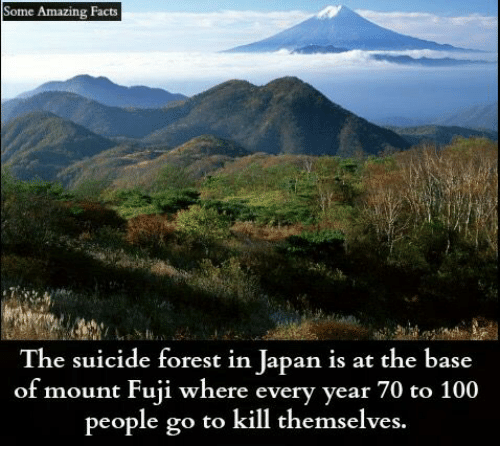 🐣 25+ Best Memes About Suicide Forest in Japan | Suicide Forest in