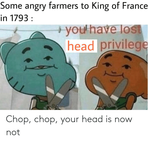 France: Some angry farmers to King of France  in 1793 :  +you'have lost  head privilege  w/erd Chop, chop, your head is now not