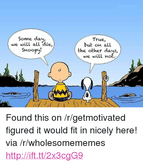 """Snoopy: Some day,  wwe will all die  Snoopy  True,  but on all  the other days,  e will not <p>Found this on /r/getmotivated figured it would fit in nicely here! via /r/wholesomememes <a href=""""http://ift.tt/2x3cgG9"""">http://ift.tt/2x3cgG9</a></p>"""