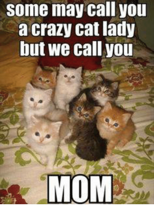 crazy cats: some may call you  a crazy cat lady  but we call you  MOM
