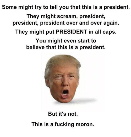 Fucking, Memes, and Scream: Some might try to tell you that this is a president.  They might scream, president,  president, president over and over again.  They might put PRESIDENT in all caps.  You might even start to  believe that this is a president.  But it's not.  This is a fucking moron.
