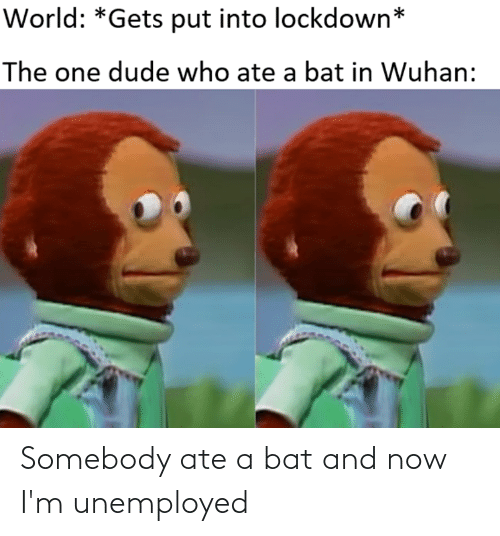 Unemployed: Somebody ate a bat and now I'm unemployed