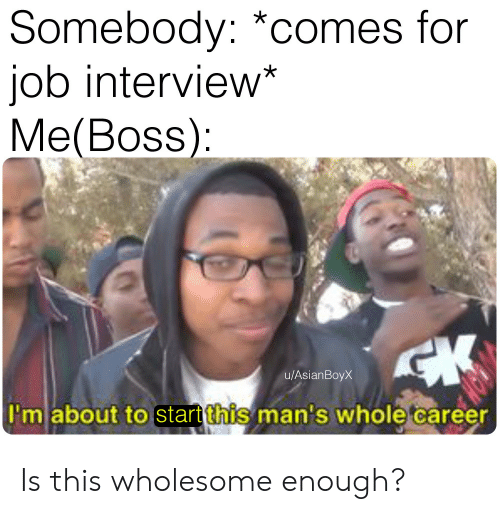 Job Interview, Wholesome, and Job: Somebody: *comes for  job interview*  Me(Boss)  u/AsianBoyX  I'm about tostart ihis man's whole career Is this wholesome enough?