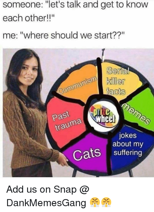 "Cats, Memes, and Jokes: someone: ""let's talk and get to know  each other!""  me: ""where should we start??""  Se  Past  jokes  about my  Cats suffering Add us on Snap @ DankMemesGang 😤😤"