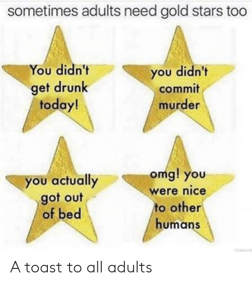 Get Drunk: sometimes adults need gold stars too  You didn't  you didn't  get drunk  today!  commit  murder  omg! you  you actually  got out  of bed  were nice  to other  humans A toast to all adults