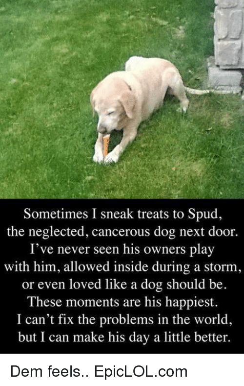 Dem Feels: Sometimes I sneak treats to Spud,  the neglected, cancerous dog next door.  I've never seen his owners play  with him, allowed inside during a storm,  or even loved like a dog should be  These moments are his happiest.  I can't fix the problems in the world  but I can make his day a little better. Dem feels..