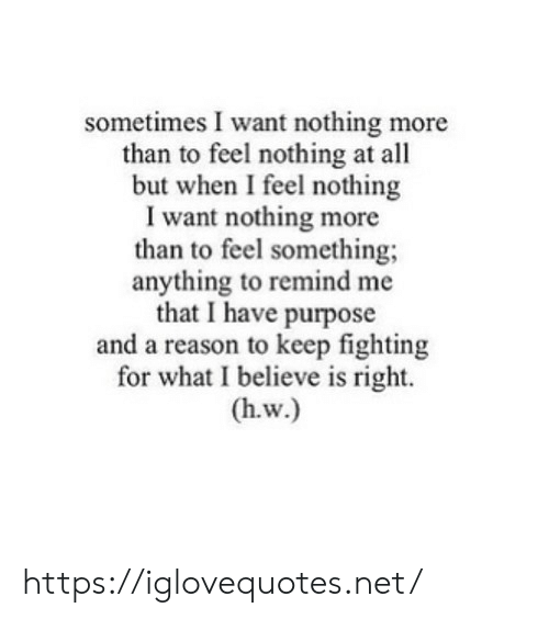 Reason, Net, and Fighting: sometimes I want nothing more  than to feel nothing at all  but when I feel nothing  I want nothing more  than to feel something;  anything to remind me  that I have purpose  and a reason to keep fighting  for what I believe is right. https://iglovequotes.net/