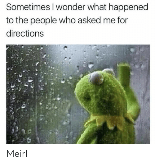 Wonder, MeIRL, and Who: Sometimes I wonder what happened  to the people who asked me for  directions Meirl