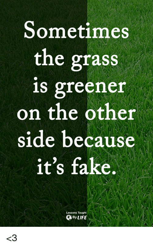 Fake, Life, and Memes: Sometimes  the grass  is greener  on the other  side because  it's fake.  Lessons Taught  By LIFE <3