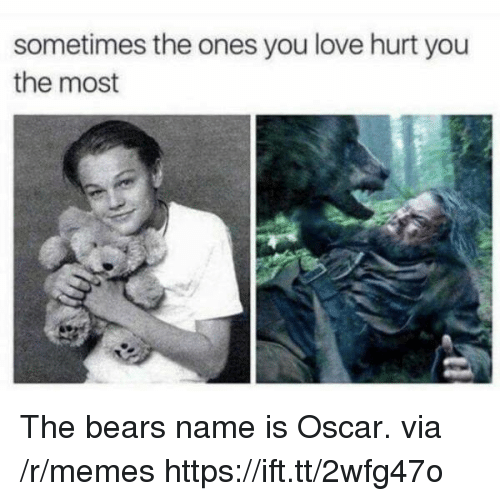 Love, Memes, and Bear: sometimes the ones you love hurt you  the most The bears name is Oscar. via /r/memes https://ift.tt/2wfg47o