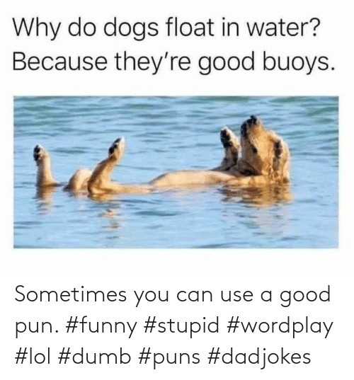pun: Sometimes you can use a good pun. #funny #stupid #wordplay #lol #dumb #puns #dadjokes