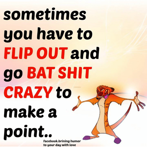 flipping out: sometimes  you have to  FLIP OUT and  go BAT SHIT  CRAZY  to  make a  point..  Facebook brining humor  to your day with love