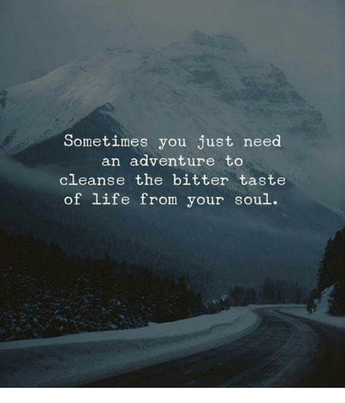 Cleanse: Sometimes you just need  an adventure to  cleanse the bitter taste  of life from your soul.