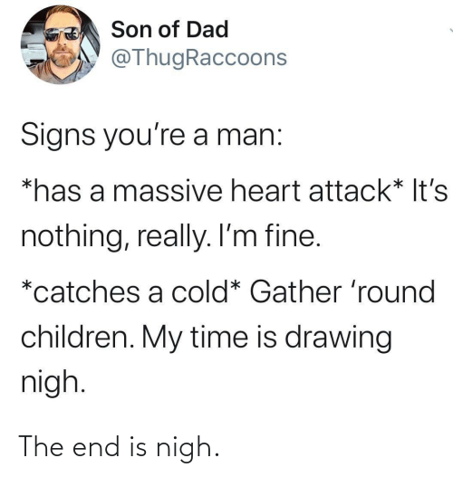 the end: Son of Dad  @ThugRaccoons  Signs you're a man:  *has a massive heart attack* It's  nothing, really. I'm fine.  *catches a cold* Gather 'round  children. My time is drawing  nigh. The end is nigh.
