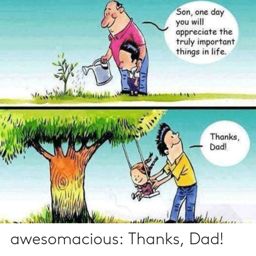 Dad, Life, and Tumblr: Son, one day  you will  appreciate the  truly important  things in life.  Thanks  Dad! awesomacious:  Thanks, Dad!