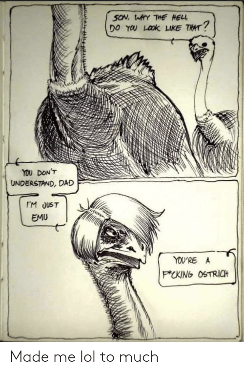 Dad: SON, WAHY THE HELL  DO YOU LOOK LIKE THAT?  YOU DON'T  UNDERSTAND, DAD  I'M JUST  EMU  YOU'RE A  P*CKING OSTRICH Made me lol to much