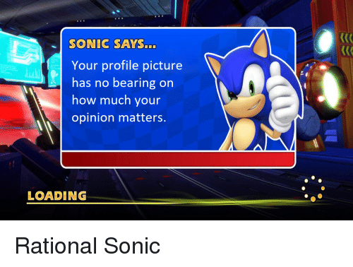 sonic says: SONIC SAYS...  Your profile picture  has no bearing on  how much your  opinion matters.  LOADING <p>Rational Sonic</p>