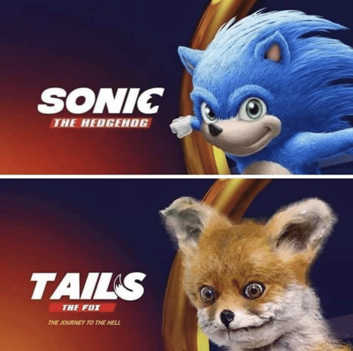 Hedgehog: SONIC  THE HEDGEHOG  TAILS  THE FOX  THE JOURNEY TO THE HELL