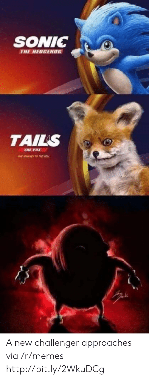 tails: SONIC0  THE HEDGEH06  TAILS  TNE FOX A new challenger approaches via /r/memes http://bit.ly/2WkuDCg