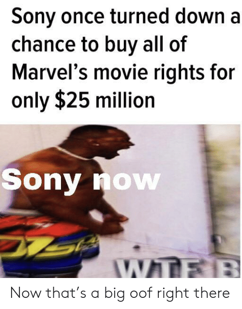 marvels: Sony once turned down a  chance to buy all of  Marvel's movie rights for  only $25 million  Sony now  WTFB Now that's a big oof right there