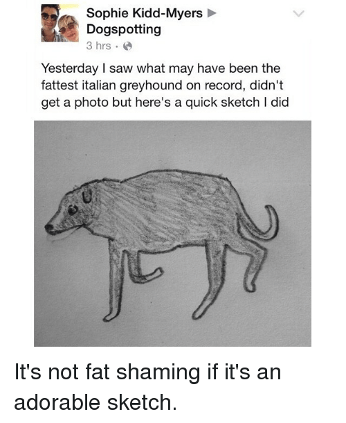 Funny, Saw, and Record: Sophie Kidd-Myers  Dogspotting  3 hrs  Yesterday I saw what may have been the  fattest italian greyhound on record, didn't  get a photo but here's a quick sketch I did It's not fat shaming if it's an adorable sketch.
