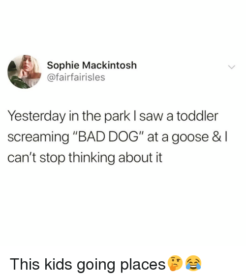"""This Kids Going Places: Sophie Mackintosh  @fairfairisles  Yesterday in the park l saw a toddler  screaming """"BAD DOG"""" at a goose & l  can't stop thinking about it This kids going places🤔😂"""