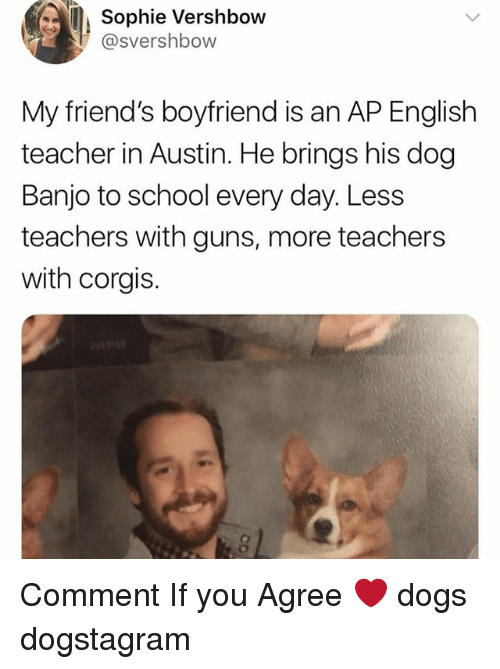 Corgis: Sophie Vershbow  @svershbow  My friend's boyfriend is an AP English  teacher in Austin. He brings his dog  Banjo to school every day. Less  teachers with guns, more teachers  with corgis. Comment If you Agree ❤️ dogs dogstagram