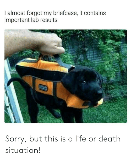Sorry: Sorry, but this is a life or death situation!