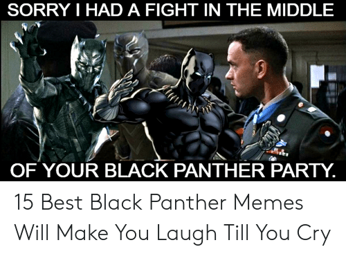 Laugh Till: SORRY I HAD A FIGHT IN THE MIDDLE  OF YOUR BLACK PANTHER PARTY. 15 Best Black Panther Memes Will Make You Laugh Till You Cry