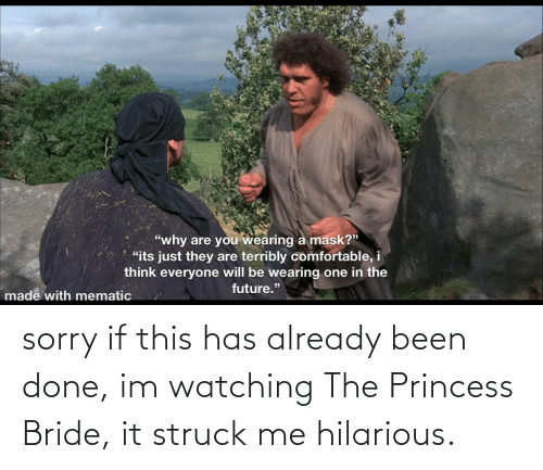 bride: sorry if this has already been done, im watching The Princess Bride, it struck me hilarious.