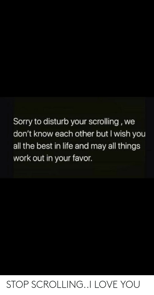 Life, Love, and Sorry: Sorry to disturb your scrolling , we  don't know each other but I wish you  all the best in life and may all things  work out in your favor. STOP SCROLLING..I LOVE YOU