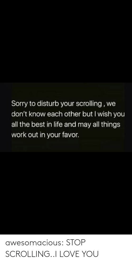 favor: Sorry to disturb your scrolling , we  don't know each other but I wish you  all the best in life and may all things  work out in your favor. awesomacious:  STOP SCROLLING..I LOVE YOU