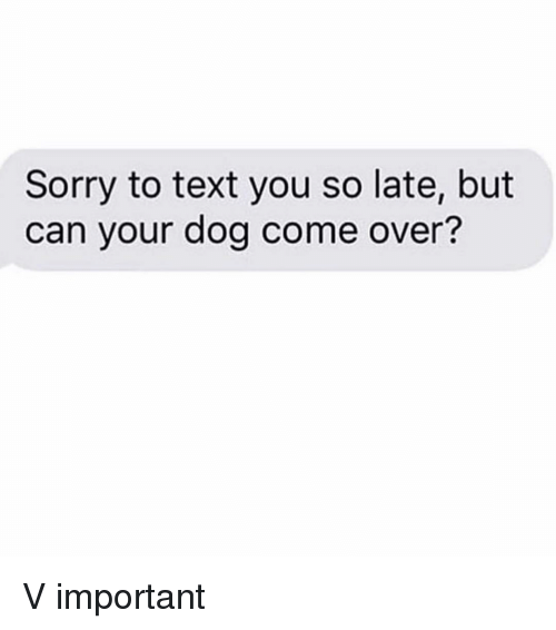 Come Over, Sorry, and Text: Sorry to text you so late, but  can your dog come over? V important