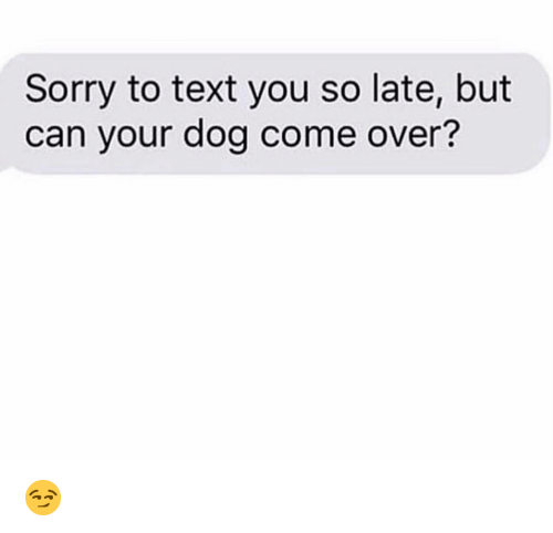 Come Over, Funny, and Sorry: Sorry to text you so late, but  can your dog come over? 😏