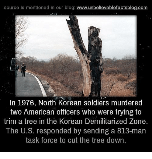 task force: source is mentioned in our blog  www.unbelievablefactsblog.com  In 1976, North Korean soldiers murdered  two American officers who were trying to  trim a tree in the Korean Demilitarized Zone  The U.S. responded by sending a 813-man  task force to cut the tree down