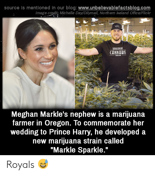 """Memes, Prince, and Prince Harry: source is mentioned in our blog: www.unbelilevablefactsblog.co  Image credit; Michelle Day/Dilymail, Northern Ireland Office/Flick  CANNABI  Meghan Markle's nephew is a marijuana  farmer in Oregon. To commemorate her  wedding to Prince Harry, he developed a  new marijuana strain called  """"Markle Sparkle."""" Royals 😅"""