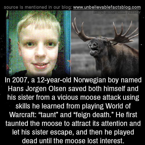 "Vicious: source is mentioned in our blog: www.unbellevablefactsblog.com  In 2007, a 12-year-old Norwegian boy named  Hans Jorgen Olsen saved both himself and  his sister from a vicious moose attack using  skills he learned from playing World of  Warcraft: ""taunt"" and ""feign death."" He first  taunted the moose to attract its attention and  let his sister escape, and then he played  dead until the moose lost interest."