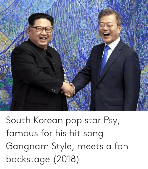 Pop, Gangnam Style, and Star: South Korean pop star Psy, famous for his hit song Gangnam Style, meets a fan backstage (2018)