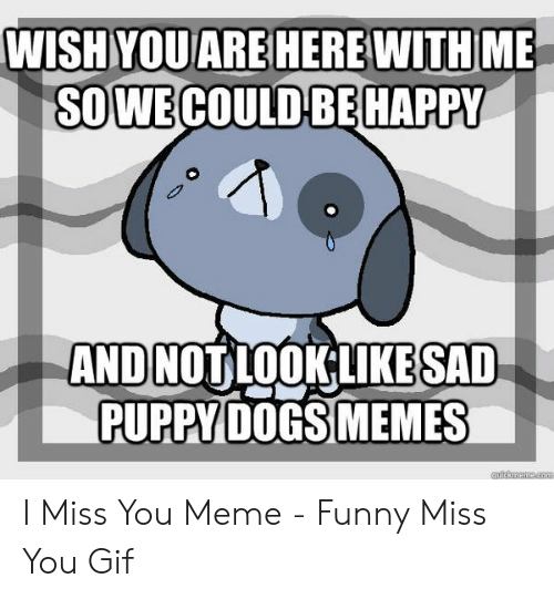 miss you meme: SOWECOULD BEHAPPY  AND NOT LOOKLIKESAD  PUPPY DOGS MEMES I Miss You Meme - Funny Miss You Gif