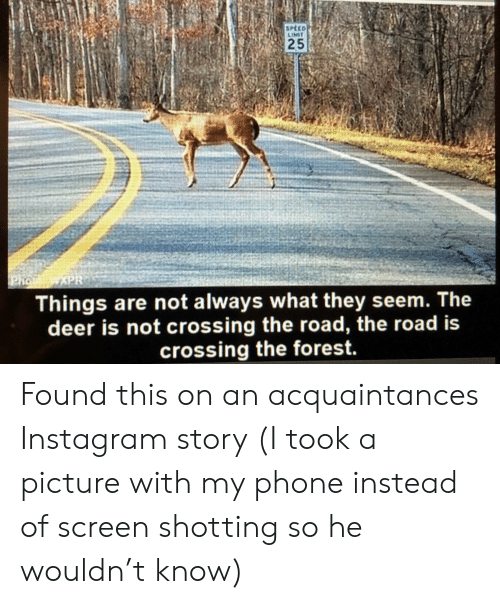 shotting: SPÉCD  LIMIT  25  XPR  Pho  Things are not always what they seem. The  deer is not crossing the road, the road is  crossing the forest. Found this on an acquaintances Instagram story (I took a picture with my phone instead of screen shotting so he wouldn't know)