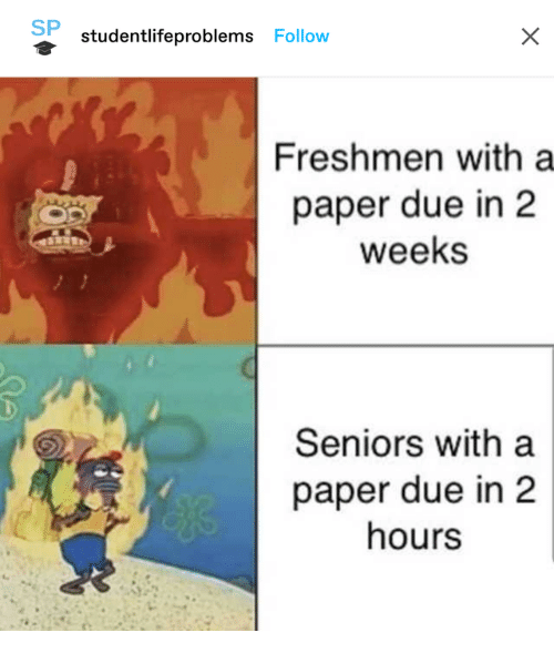 2 Weeks: SP  studentlifeproblems Follow  Freshmen with a  paper due in 2  weeks  Seniors with a  paper due in 2  hours