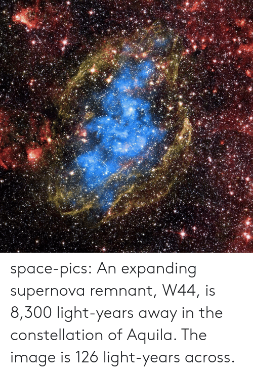 supernova: space-pics:  An expanding supernova remnant, W44, is 8,300 light-years away in the constellation of Aquila. The image is 126 light-years across.