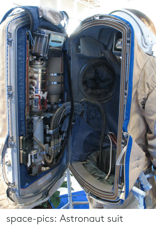 Tumblr, Blog, and Http: space-pics:  Astronaut suit