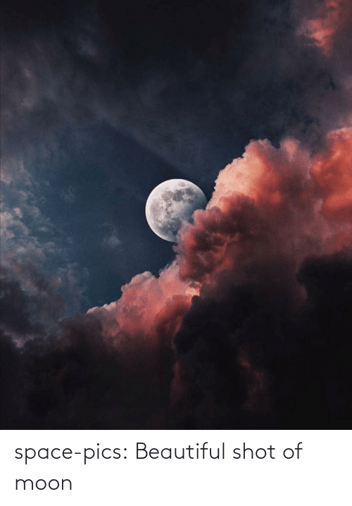Moon: space-pics:  Beautiful shot of moon